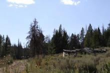 Moonedya Mining Claim, Montana: A shed near Moonedya Mining site. (Photo Credit: