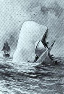 Moby Dick whale lives in the hearts and minds of fans celebrating Melville