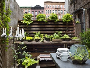 HGTV Small Space Gardening Tips