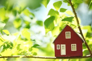 Things to Change About Your Home In The Summer