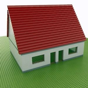 Children and Home Inspection